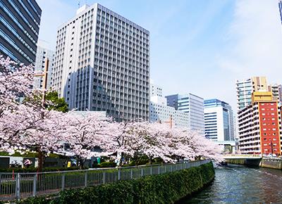 五反田にも観光スポットはある!ラブホテルと近くの人気スポットをご紹介