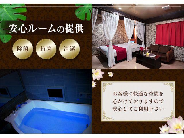 全室、専業者による防菌・防カビ洗浄を実施しております。ご安心してお部屋をご利用いただけます。