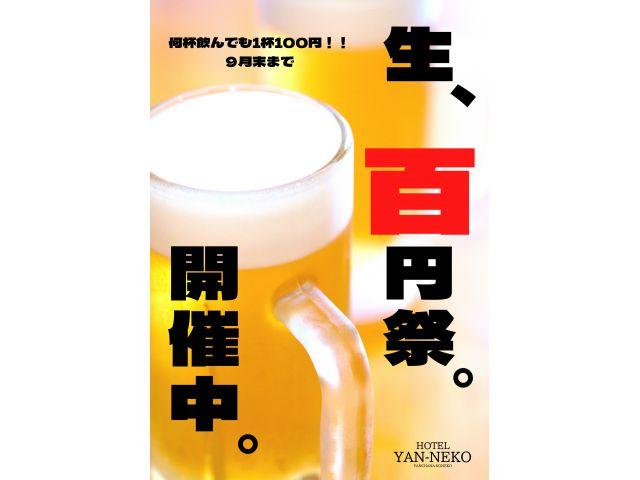 生ビールがどれだけ飲んでも1杯100円!!めちゃめちゃお得やないか〜い!!
