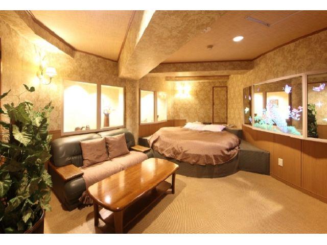 501 / 601 ラグジュアリーな雰囲気漂う広い客室