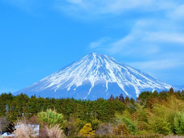 211号室 / 世界遺産富士山 ★世界遺産・富士山★